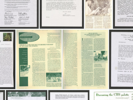 A collage of written documents.