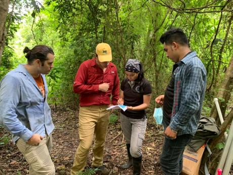 Field crew stands together in the forest referring to data on a clipboard.